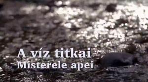 """""""Misterele apei"""" – noul nostru filmuleț realizat"""